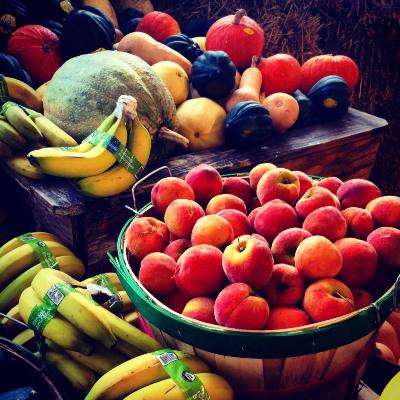 fruit 400x