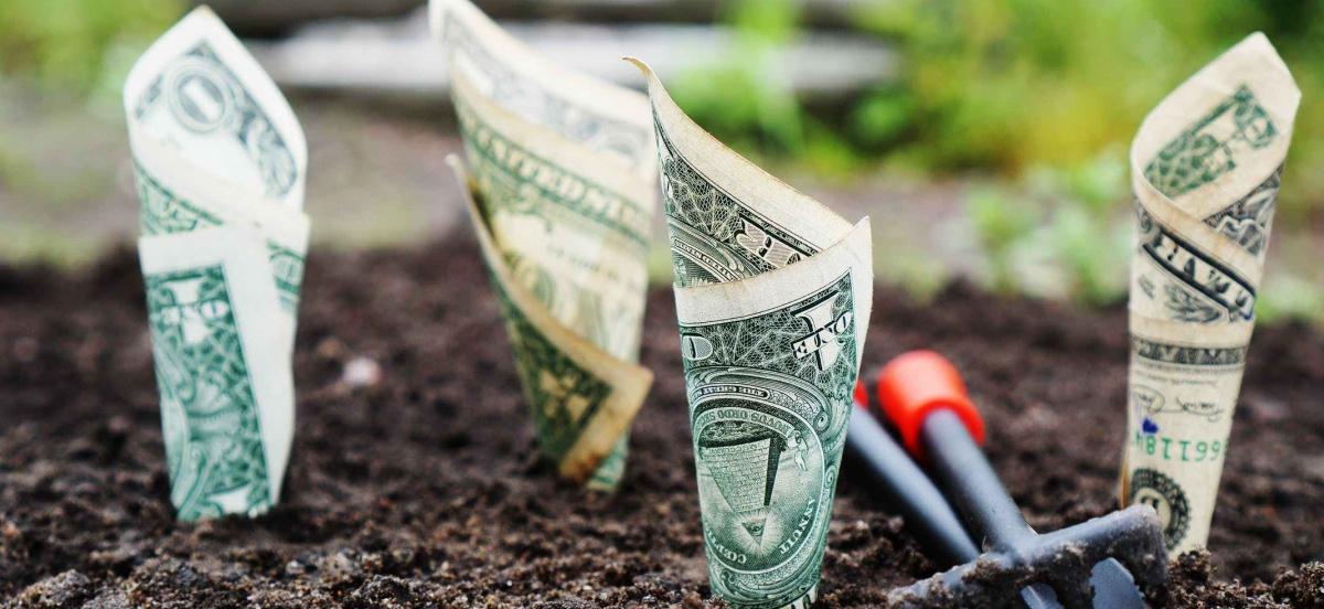 money growing conversion rate optimization