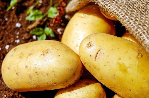 mobile office potatoes